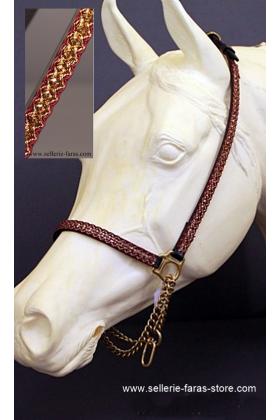 arabian horse showhalter brandy