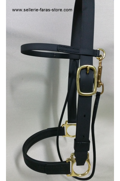 arabian horse schooling halter